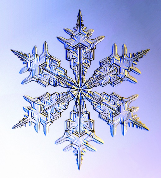 Image from SnowCrystals.com, photo by by Kenneth G. Libbrecht using a specially designed snowflake photomicroscope.